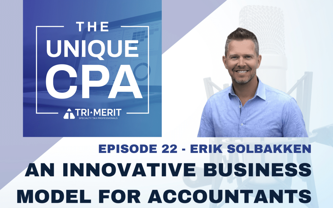 An Innovative Business Model for Accountants